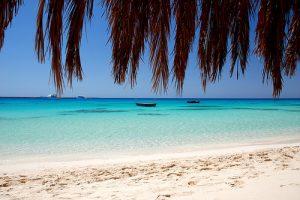 beach in egypt on a luxury yoga retreat