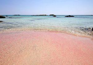 elafonisi beach crete pink sands