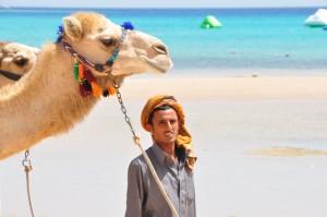 Camel Egypt Yoga Retreat