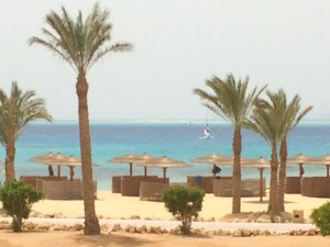 The Red Sea beach at the yoga retreat in Egypt.
