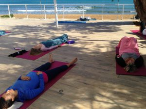 savanna on a yoga retreat on crete