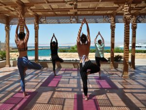 Tree pose at the Egypt yoga escape.