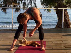 yoga cat crete greece