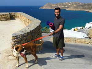 playing with a dog in mykonos after yoga class in mykonos