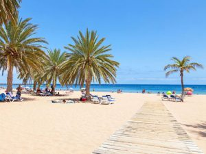 Day trip to the beach on Tenerife with Yoga Escapes