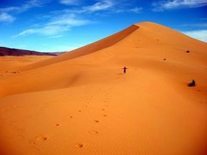 the orange sand of the moroccan desert