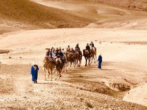camel-rides-desert-luxury-yoga-retreat-morocco