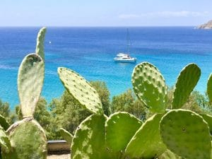 cactus-mykonos-luxury-yoga-retreat-yoga-escapes