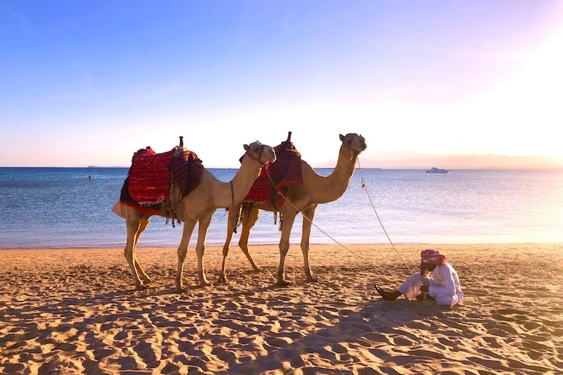camel-beach-luxury-yoga-retreat-egypt-soma-bay